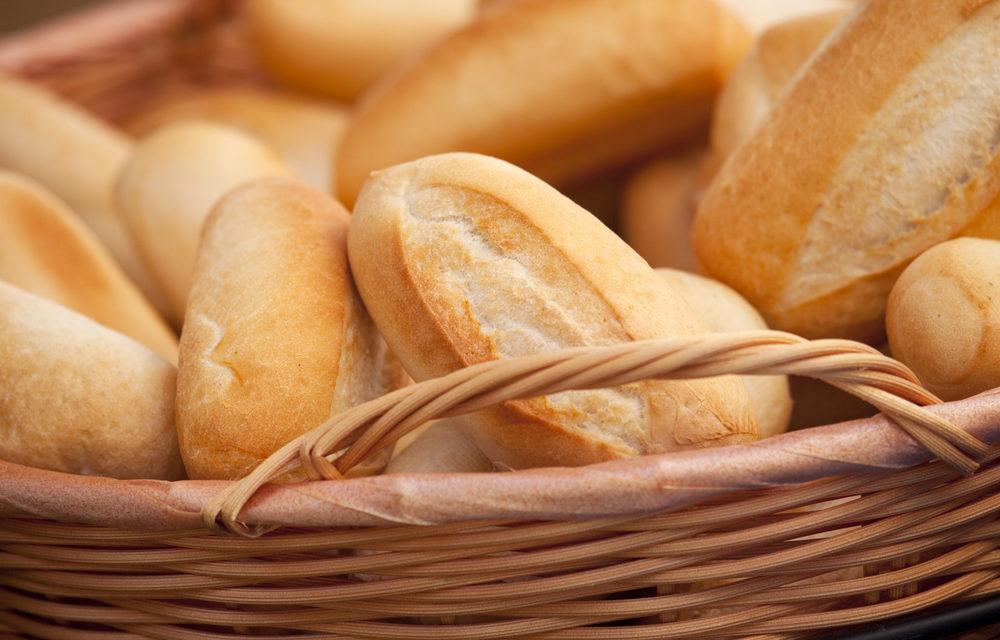 Da semente à farinha: qualidade industrial do trigo é tema de palestras na Expodireto