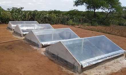 Dessalinizador de baixo custo garante água potável no semiárido