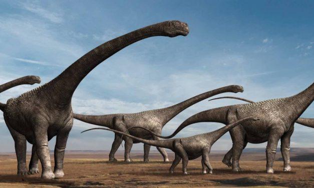 Pesquisadores descobrem fósseis de dinossauros com mais de 80 milhões de anos em Goiás