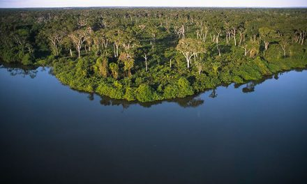 Bolsonaro lança projeto de recuperação do Rio Araguaia