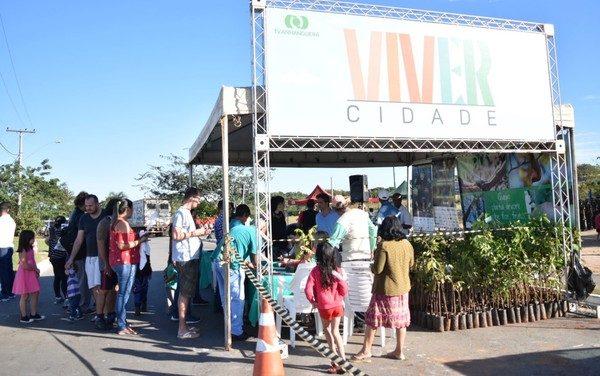 Viver Cidade ensina sobre o plantio de plantas medicinais e reflorestamento, em Goiânia