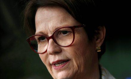 Ministra diz que liberação de agrotóxicos não traz riscos