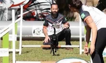 Aulão de adestramento dá dicas de recreação e treinamento para cães, em Goiânia