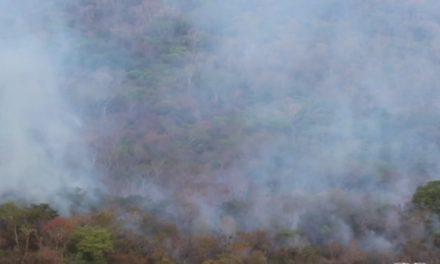 Queimada atinge Parque Estadual da Serra Dourada, ponto turístico da cidade deGoiás