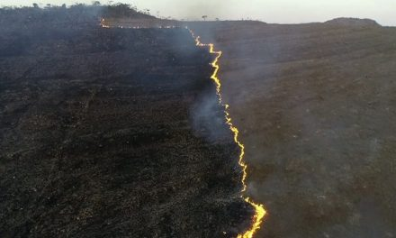 Incêndio destrói 500 hectares do Parque Nacional da Chapada dos Veadeiros