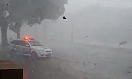 Defesa Civil emite alerta de tempestade para Goiânia