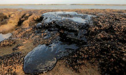 Quatro mil toneladas de óleo jáforam retiradas de praias nordestinas