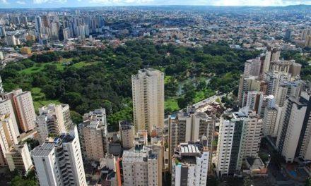 Pesquisa do IFG aponta redução da arborização em Goiânia