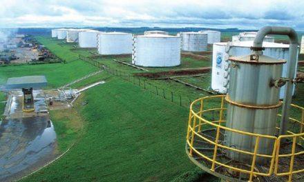 Balança comercial de Goiás registra superávit de US$ 45,9 mi em janeiro