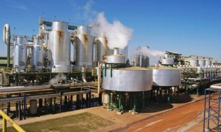 Consumo de etanol em Goiás supera o de gasolina, segundo ANP