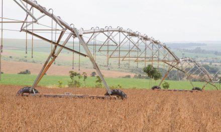 IBGE prevê safra recorde de grãos, com alta de 2,2%