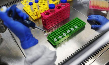 Capes cria mais 850 bolsas para pesquisas em pandemias
