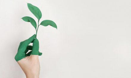 Como o intraempreendedorismo social pode ajudar sua empresa a inovar