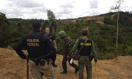 Operação em áreas da Amazônia Legal terá orçamento de R$ 60 milhões