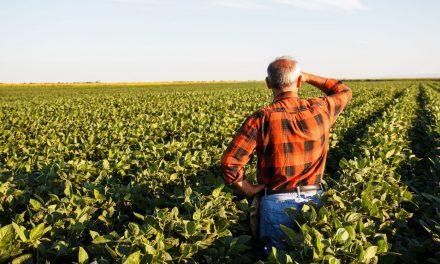 CMN reduz exigências para operações de crédito rural
