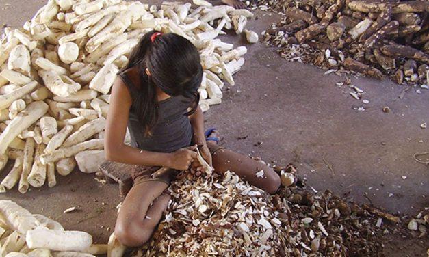 Fórum teme que covid-19 provoque aumento de trabalho infantil