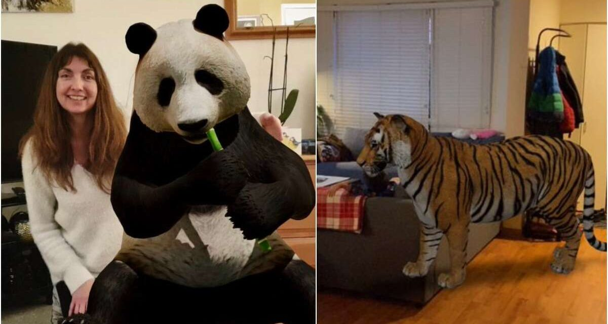 Como ver animais em 3D? Google usa realidade aumentada para criar projeções