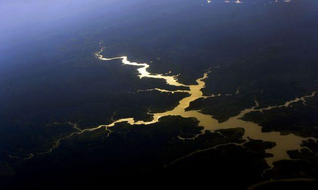 Governo destinará R$ 500 milhões para proteger mata nativa da Amazônia