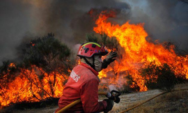 Goiás registra 51 focos de incêndio