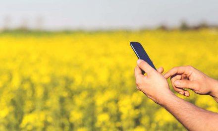 Parceria leva internet a 1,8 mil famílias de assentamentos rurais