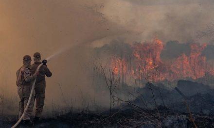 Incêndio Florestal já comprometeu 12% da Chapada dos Veadeiros