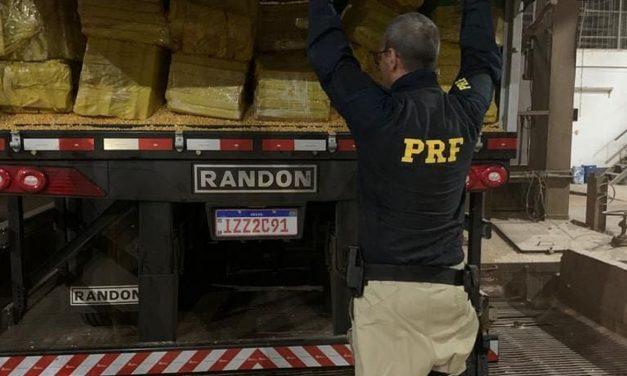 Ações da PRF aumentam apreensões de drogas nas rodovias federais