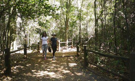Decreto qualifica parques para concessão à iniciativa privada