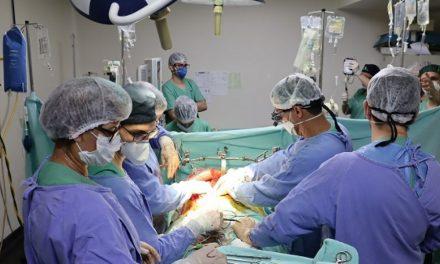 HGG ultrapassa 500 transplantes realizados