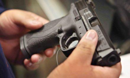 Assembleia aprova isenção de ICMS na aquisição de armas de fogo