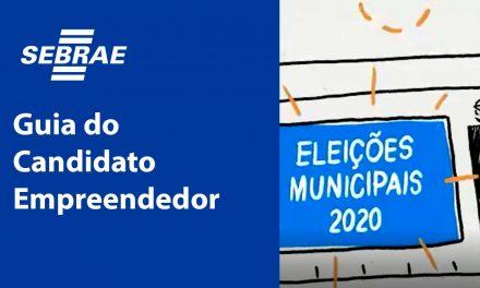 Empreendedorismo Sebrae lançou guia para orientar candidatos nas eleições municipais sobre empreendedorismo