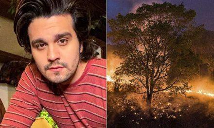 Luan Santana fará 'live' direto do Pantanal para denunciar queimadas