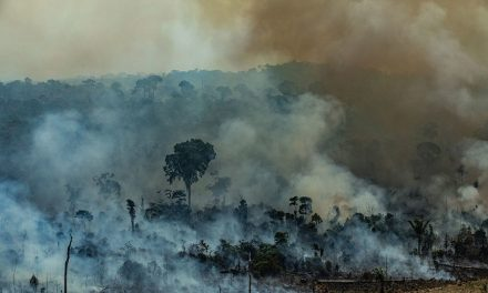 Deputados defendem investimento contra queimadas