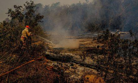 Câmara quer convocar Salles para falar sobre ações no Pantanal