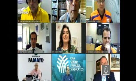 Senado: debatedores destacam estiagem e pedem união para combater fogo no Pantanal