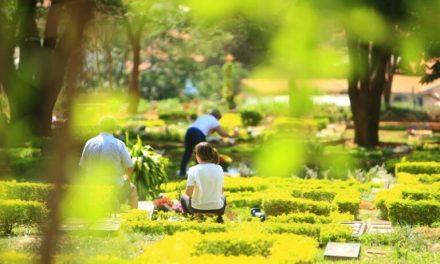 Prefeitura publica protocolos para Dia de Finados em Goiânia