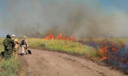 Comissão do Pantanal ouve especialistas sobre efetividade do combate às chamas