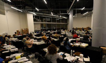 Advogada brasileira participa de contagem de votos nos Estados Unidos