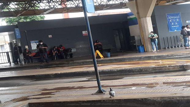 Paralisação de quase 5 mil funcionários deixa Goiânia sem transporte público