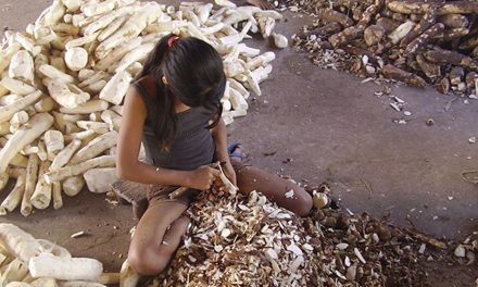 IBGE: Brasil tem 4,6% das crianças e adolescentes em trabalho infantil
