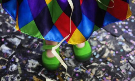 Caiado encaminha projeto que suspende feriado da terça de carnaval
