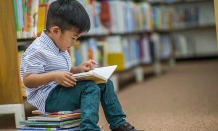 Lei que obriga escolas a ter Bíblia é inconstitucional, decide STF