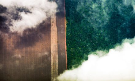 Em carta a Biden, Bolsonaro promete fim do desmatamento ilegal