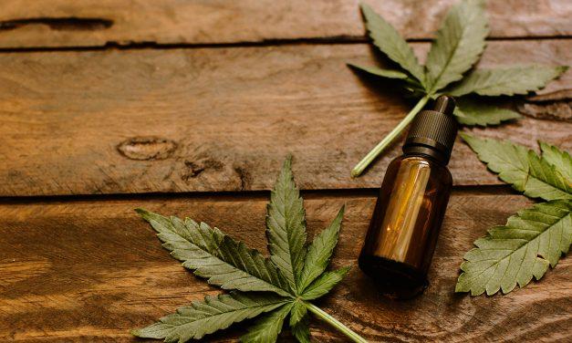 Anvisa otimiza importação de produtos derivados da Cannabis