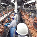 Arábia susupende compra de carne de ave de 11 frigoríficos do Brasil