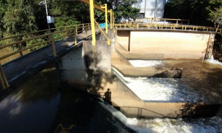 Baixo nível de água do Rio Meia Ponte e falta de chuvas já causam preocupação