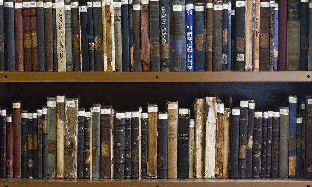 Bibliotecas e museus foram setores culturais menos conectados em 2020