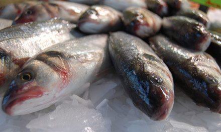 Mulher está em UTI por causa da 'doença da urina preta' após comer peixe em Goianésia