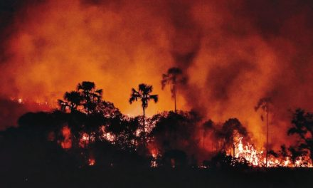 Alto Paraíso de Goiás decreta estado de emergência ambiental