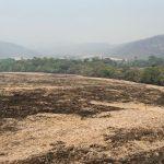 Com a ajuda da chuva, incêndio na Chapada dos Veadeiros é extinto