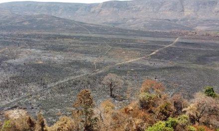 Incêndio atinge reserva do Parque Nacional da Chapada dos Veadeiros